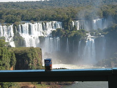 The Beans at Iguacu