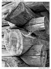 Hand-Hewn Logs in New Lois, Georgia (Old Shoe Woman) Tags: usa georgia southgeorgia dilosep05 logs handhewn mrweaver loghouse bw blackandwhite photoshop dilosept05bw dilosept05