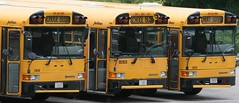 environmental health, school bus, air pollution, children's health, reporting on health