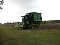 Cotton Pickin' Machine in Cotton Field (Old Shoe Woman) Tags: usa georgia southgeorgia dilosep05 cotton cottonpicker farmmachinery tractor dilosept05