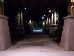 walkway (Bahugala) Tags: nightphotograpghy city