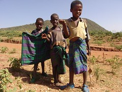 Young cowherds (CharlesFred) Tags: africa countryside african somali dailylife ethiopia afrique harar ogaden babile