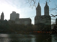 nyc_007 (madmaharaja) Tags: centralpark christo newyork gates orange gatesmemory art saffron newyorkcity nyc travel usa winter