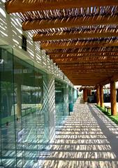 Sun, Shadows and Reflections (rainy city) Tags: plane reflections mexico morelia shadows angle squash eyecatcher michocan tresmariasgolfclub planeangle