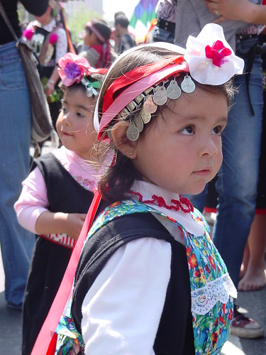 Mapuche Girl / Niña Mapuche
