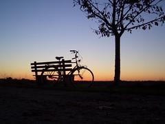 Bike 2 (fihu) Tags: sunset tree bike germany bench sonnenuntergang bank baum fahrrad fischerhude exs100 zuning showofffacebook