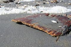 10-16-2005 12-17-23 PM_0079 (Brian W. Tobin) Tags: fortfunston beach