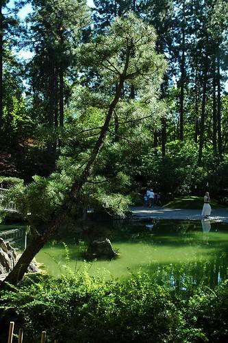Japanese garden #2