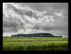 before the storm (Cilest) Tags: wood sky storm field weather clouds austria cilest cloudy kurt stormy 500plus20 tlpoedeleted