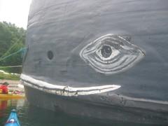 IMG_2598 (Custom) (Darren M) Tags: kayaking knoydart