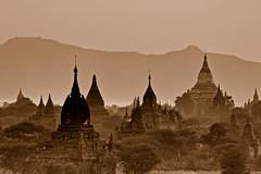 Stupa Stupor!! - by tarotastic