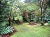 Hawaii 3 039 (jasonEscapist) Tags: hawaii bigisland hiiaka hiiakahouse garden