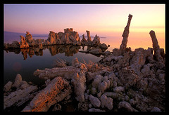 Mono Lake Morning (Buck Forester) Tags: morning lake landscape mono desert sierra velvia highdesert wilderness monolake tufa easternsierra tufas tufatower tufatowers