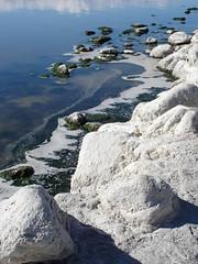 Coastline (Mark Philpott) Tags: salton sea coachella valley inland brackish salty water wet smell odour sulphur sulfur palm springs california usa us visit trip 2005