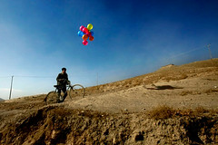 balloons in kabul (davidclifford) Tags: travel photojournalism documentary afghanistan kabul