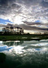November evening (ESOX LUCIUS) Tags: blue holland me clouds wow ilovenature countryside searchthebest albaluminis taco polder novemberlight