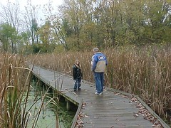 Tom & Destiny Walking the Plank (Rainbow Tree) Tags: indian trails ohio nature country fall wildlife destiny tom marsh swamp walking wood plank path