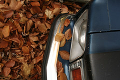 gathering (helveticaneue) Tags: 2005 november blue orange leaves car pennsylvania walk yes boilingsprings headlight centralpa centralpennsylvania alamy kicey laurakicey pflg