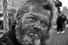 a new leaf (stoneth) Tags: poverty sf sanfrancisco california ca street portrait people blackandwhite bw 15fav white man black male eye topf25 beautiful face topv111 closeup 1025fav 510fav hair beard person blackwhite eyes topv333 nikon day d70 nikond70 homeless poor photojournalism streetportrait forsakenpeople social impoverished 2006 100v10f 1870mmf3545g human aged grayscale nikkor 110fav destitute streetshot 125fav 222v2f sfcivic