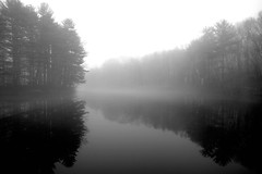 (Lastexit) Tags: trees winter blackandwhite bw topf25 water weather topv111 fog reflections ilovenature pond january dream foggy newengland ct favme wideangle 123 321 eerie 5d dreamy lowkey branford branfordsupplypond acoctober