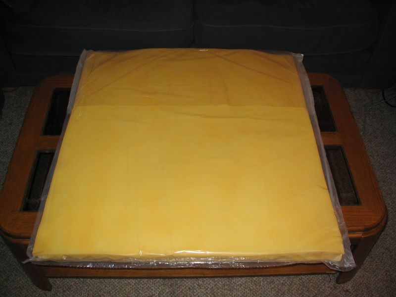 Cheese Costume 1