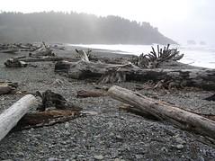 Olympic Peninsula (Jan 05) 173 (Ayric Andy) Tags: beach coast waves washingtoncoast olympicmountains crescentlake lapushwa