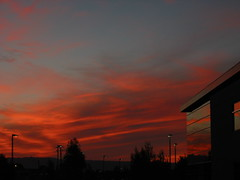 microsoft-sunset