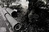 L1002985 (yayuyon) Tags: leica 15mm swh m82