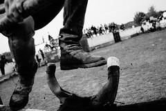 MIM : Challenging Bulls | Face aux taureaux (galibert olivier) Tags: people france monochrome youth portraits frankreich noir gente portretten south kultur culture bull bulls menschen arena retratos toros sur frankrijk arene et francia blanc personnes cultura sud cultuur  camargue  mensen juventud  sden    portrts  taureaux zuiden  stieren      stiere