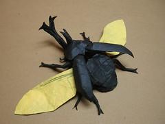 Kabutomushi (shuki.kato) Tags: paper japanese flying origami helmet beetle super samurai fold complex rhinoceros kabutomushi