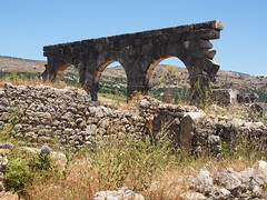 P5261419 (lnewman333) Tags: africa ancient northafrica arches historic worldheritagesite morocco fez maroc maghreb fes volubilis romanruins unescosite 1stcenturyad