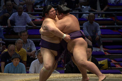 More sumo action