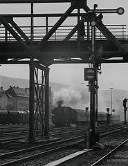 BR01 enters Neuenmarkt-Wirsberg Station