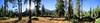 Simpson Meadow - Kings Canyon (Bruce Lemons) Tags: california kingscanyonnationalpark sierra sierranevada mountains hike backpacking hiking wilderness middlefork kingsriver simpsonmeadow