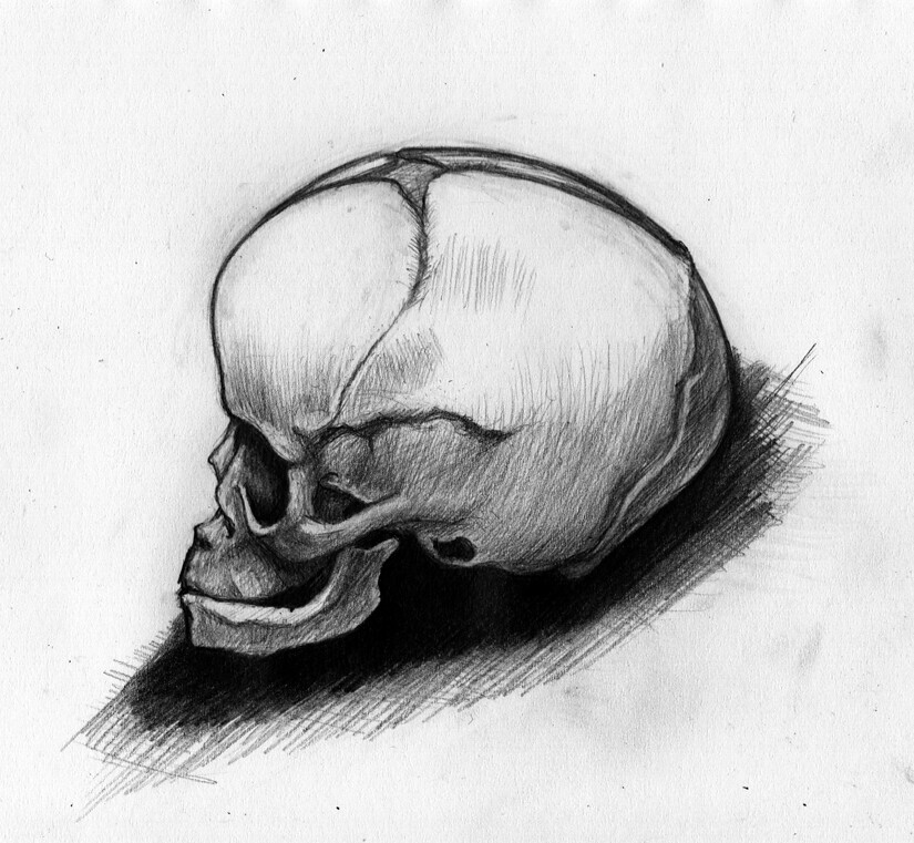 The World\'s Best Photos of anatomy and drawing - Flickr Hive Mind