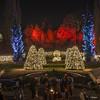 Christmas_Garden_Berlin_05 (BIngo Schwanitz) Tags: berlin botanischergarten botanischergartenberlin christmasgarden d7000 glühwürmchengarten lichtinstallation lowlight nachtaufnahme nikon nikond7000 sigma sigma1750mmf28exdcoshsm