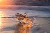 Golden Iceberg (Sophie Carr Photography) Tags: iceberg jokulsarlon beach iceland goldenhour golden magical longexposure sunrise