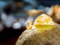 Macro Mondays - It's A-Peeling To Me HMM! (nheyermeyer) Tags: macromondays itsapeelingtome potatointheskin pellkartoffel makro macro kartoffel schale