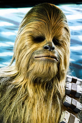 Chewbacca (JohnnyJangles) Tags: starwarsidentities starwars chewbacca chewie wookiee