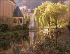 St Jean du Grund, reflecting in the Alzette River, Luxembourg (Wagsy Wheeler) Tags: luxembourg luxembourgcity river alzette alzetteriver trees tree reflection water stjohnschurch stjeandugrund melusina mermaid abbeyneimënster neimënster church leaves nature