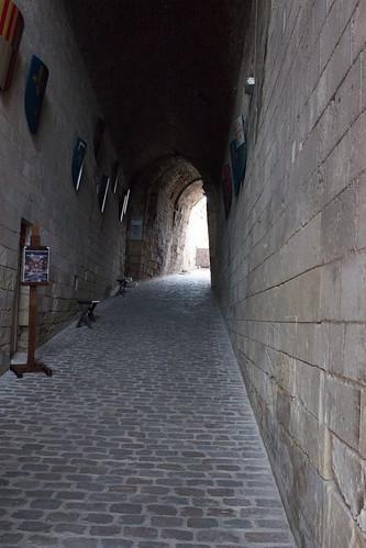 Entrée du Château d'Amboise