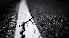 Nature wins.. (S.T.A.R.S) Tags: riss strasse natur pflanze asphalt farbe weiss schwarz