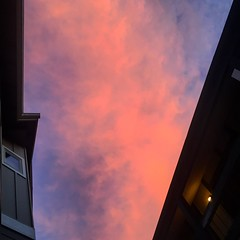 Pink. (emilypallack) Tags: pink sunset sky oregon