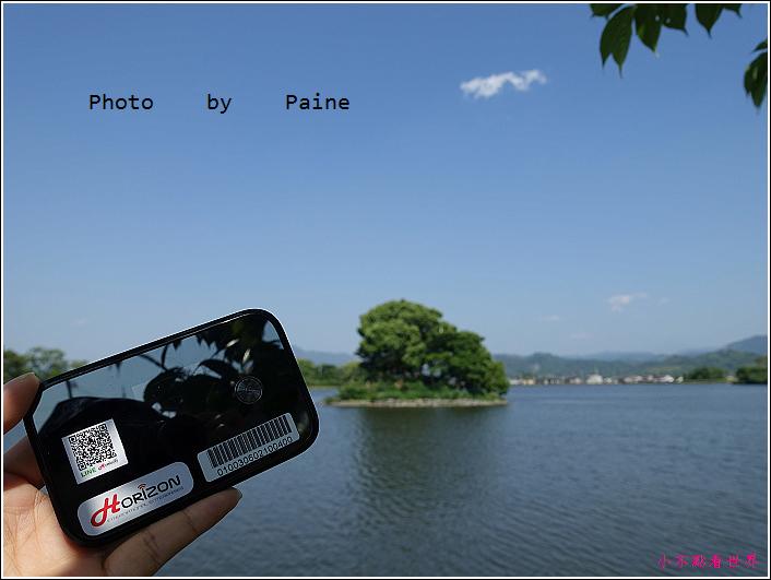 和歌山大池遊園-平池綠地公園 (28).JPG