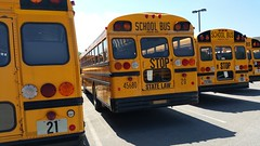 Austintown Local Schools #20 Rear D/S (Montell305) Tags: 20