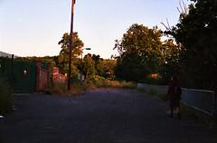 (The Integer Club) Tags: film 35mm yashicaelectro35gt 2016 london uk sunset sebastian summer