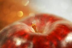 Holiday Bokeh.  HMM! (Small and Beautiful) Tags: macromondays holidaybokeh macro d3100 apple soft wow