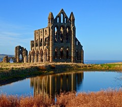 The Abbey Pond (rustyruth1959) Tags: nikon nikond3200 tamron tamron16300mm yorkshire whitby coast seaside sea water outdoor blue sky pond grass reflections abbey ruins architecture building structure whitbyabbey monastery church landscape arches windows shoreline facade choir eastend wall stonework ruin