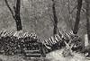 Fine anni Settanta, la neve cade davanti alla finestra della mia casa nelle montagne abruzzesi... (adrianaaprati) Tags: earthquake snow neve mountains house oldhouse memories homesickness time losttime woodpile