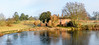 Lake Cottage Ickworth Park-3760 (johnboy!) Tags: ickworthpark ickworthhouse ickworth deadtrees nationaltrust